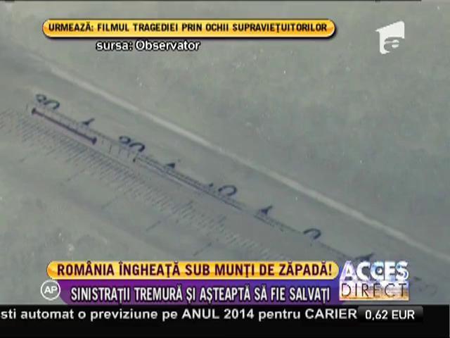 Ger cumplit în România!