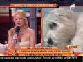1.000 de euro recompensă pentru câinele furat al Simonei Sensual!