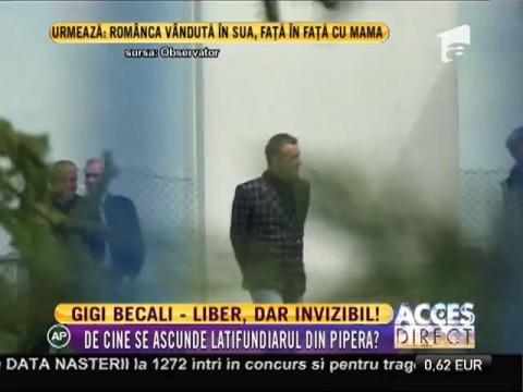 Gigi Becali este liber, dar invizibil!
