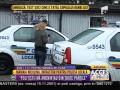 Poliția Locală, captură de toată rușinea!