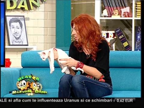 Candice Dragotă, crescătoare de pisici