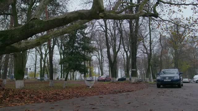 """O nouă poveste de dragoste, la orizont, în """"Mangalița"""", sezonul 2! Polițistul Sică a leșinat! Lecție de exorcizare și război împotriva ciorilor!"""