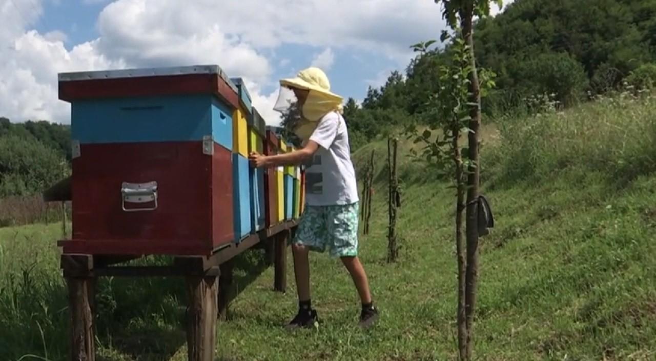 Femeia de apicultura care cauta omul