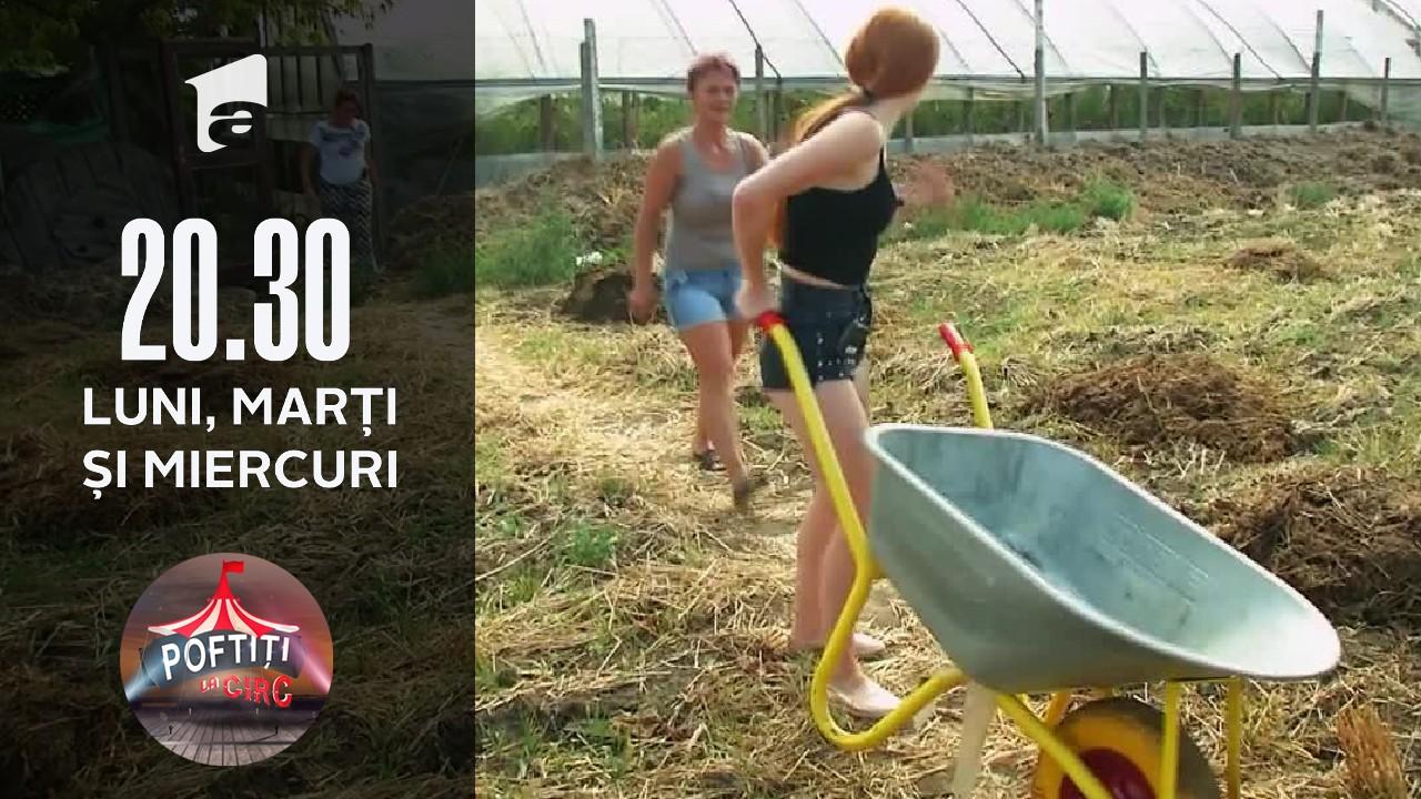 Nea Marin i-a luat la țintă cu praștia pe circarii de la Circo Bellucci