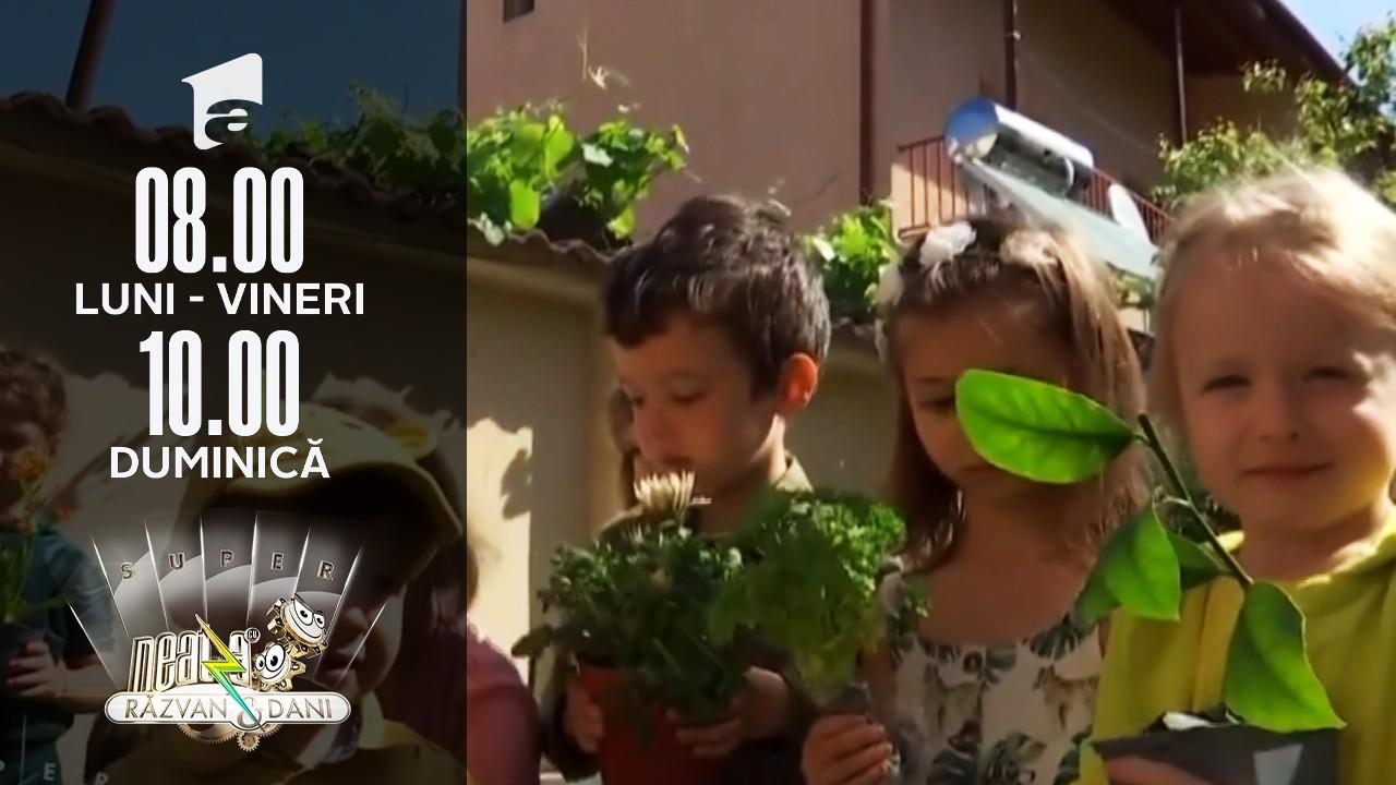 Picii de grădiniță, grădinari pentru o zi
