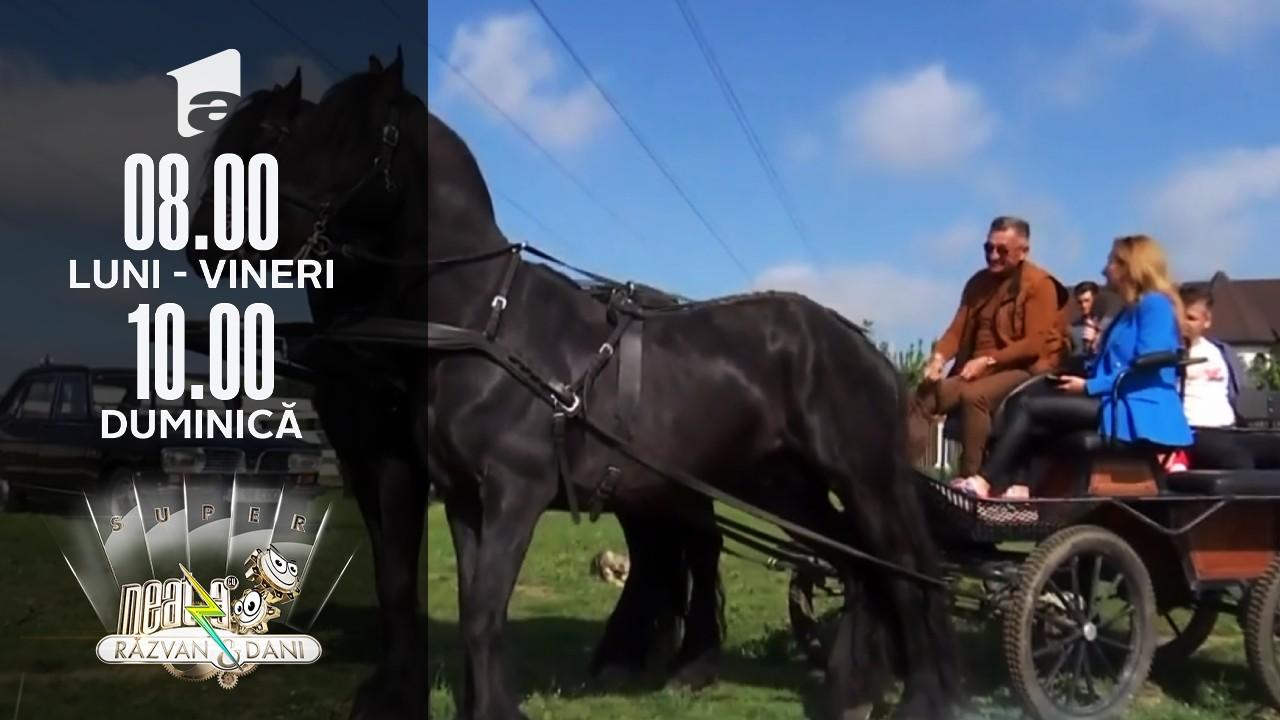 Vrei o plimbare pe lângă București? Super Neatza îți arată cele mai faine destinații de weekend!
