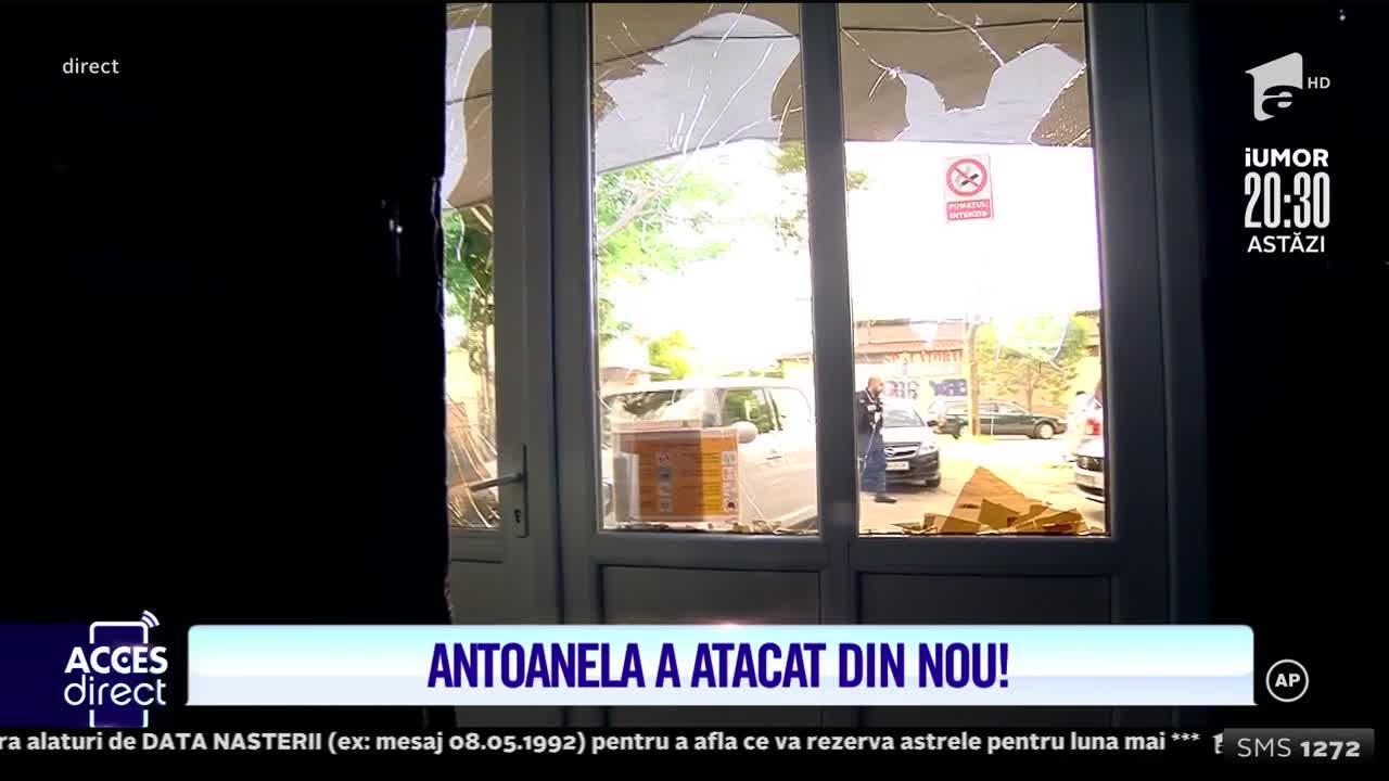 Antoanela a atacat din nou sediul Acces Direct! Mirela Vaida: Procurorii nu înțeleg!