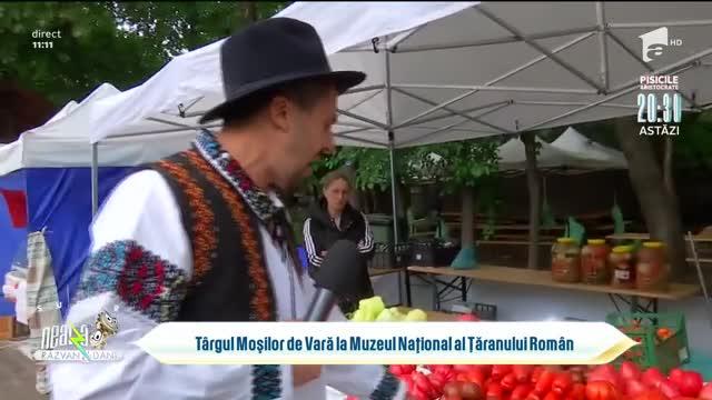 Târgul Moșilor de Vară la Muzeul Național al Țăranului Român