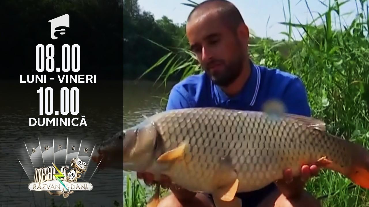 Super Neatza, 21 iulie 2021. Nu e poveste pescărească! Studenții de la Medicină, duel în undițe cu cei de la Drept