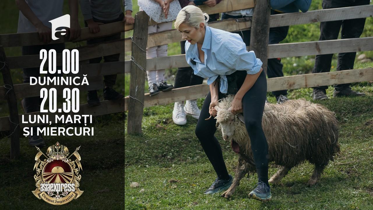"""Asia Express sezonul 4, 26 octombrie 2021. Cine a câștigat amuleta. Lidia Buble, """"lovitură"""" pentru Natantici"""