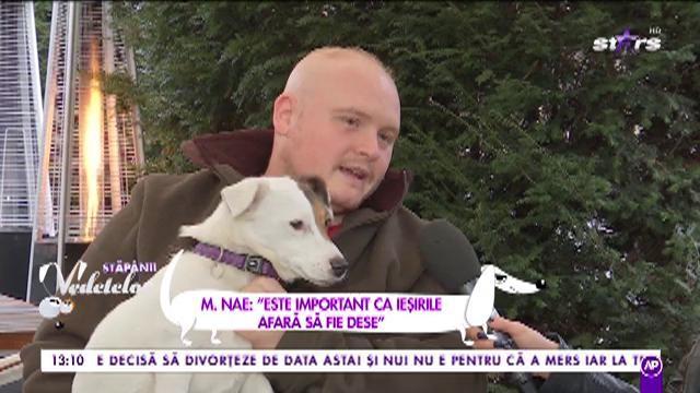 """Așa înveți câinele să nu își mai facă nevoile în casă: """"Este important ca ieșirile afară să fie dese"""""""